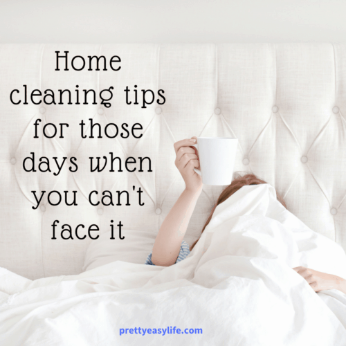 Home cleaning tips for those days you can't face it
