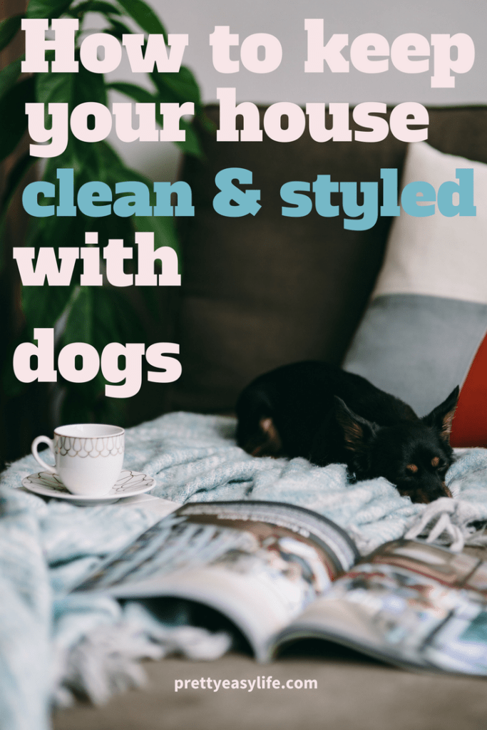 How to keep your house clean and styled when you have dogs