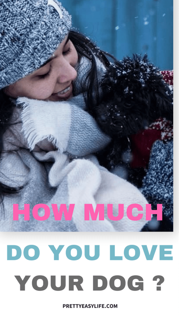 How much do you love your dog - 10 ways to give all this love back to him