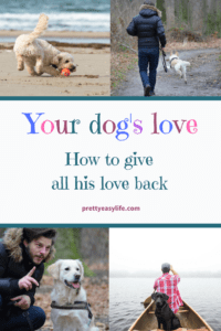 how much you love your dog, ways to make the most of your dog's love