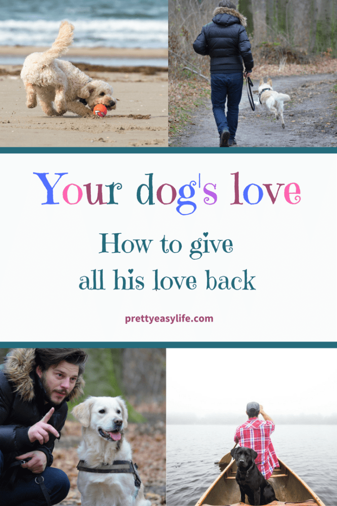 your dog's love - How to give all his love back