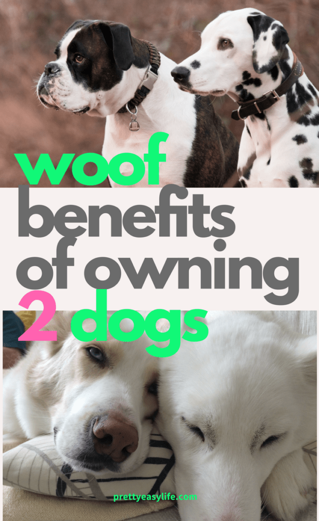 woof benefits of owning 2 dogs