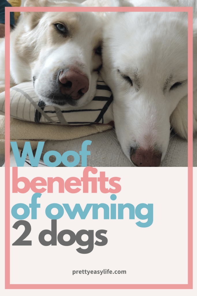 woof benefits of 2 dogs