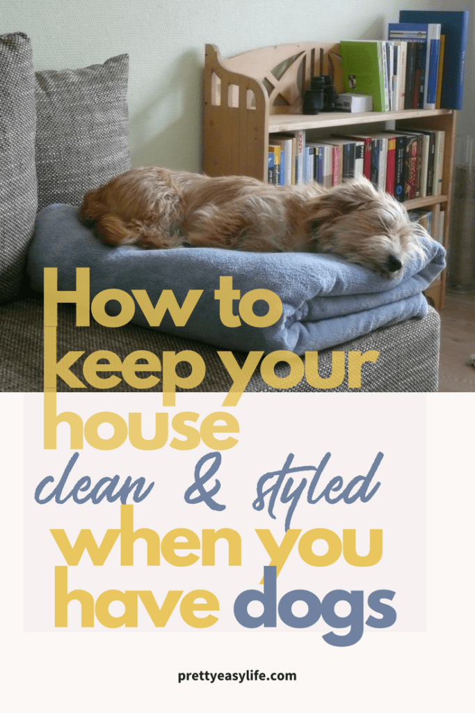 How to keep your house clean & styled when you have dogs
