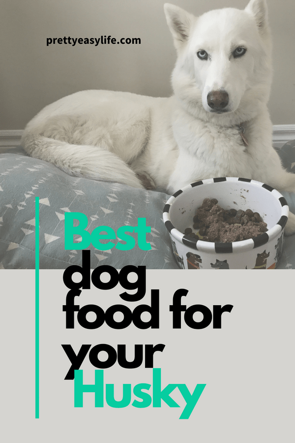 best dog food for husky