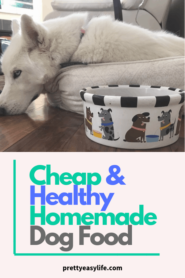 Cheap and healthy homemade dog food that your dog will love