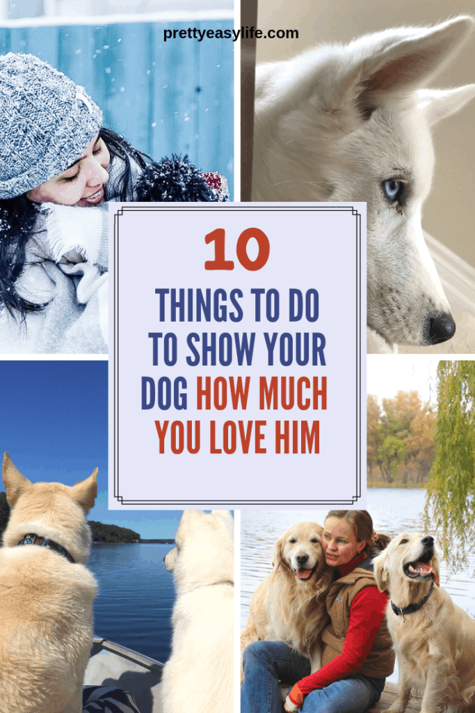 10 things to do to show your dog how much you love him