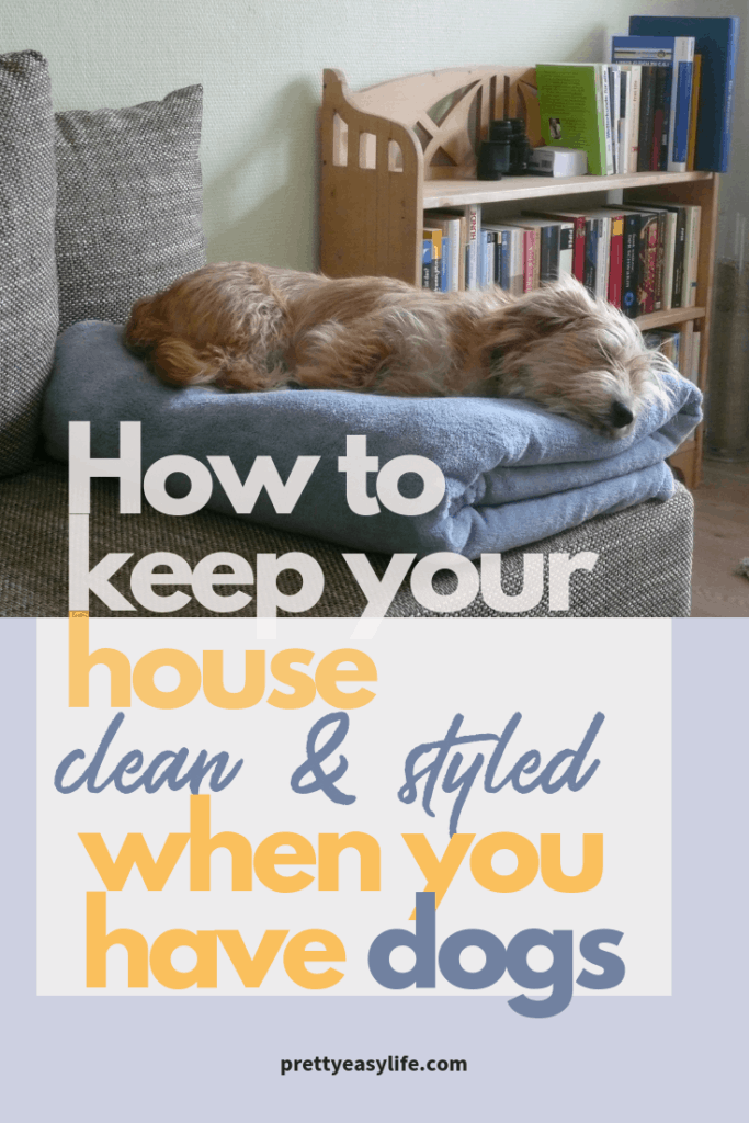 How to keep your house clean when you have dogs