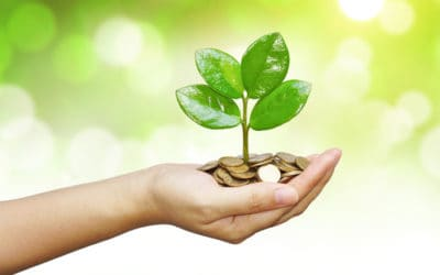How to Attract Wealth with Feng Shui